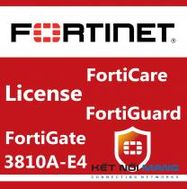 Fortinet FortiGate-3810A-E4 Series